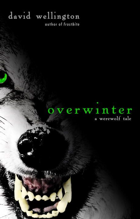 Overwinter By: David Wellington