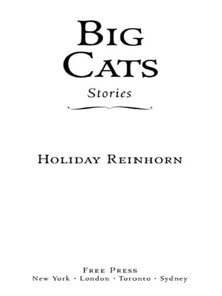 Big Cats By: Holiday Reinhorn