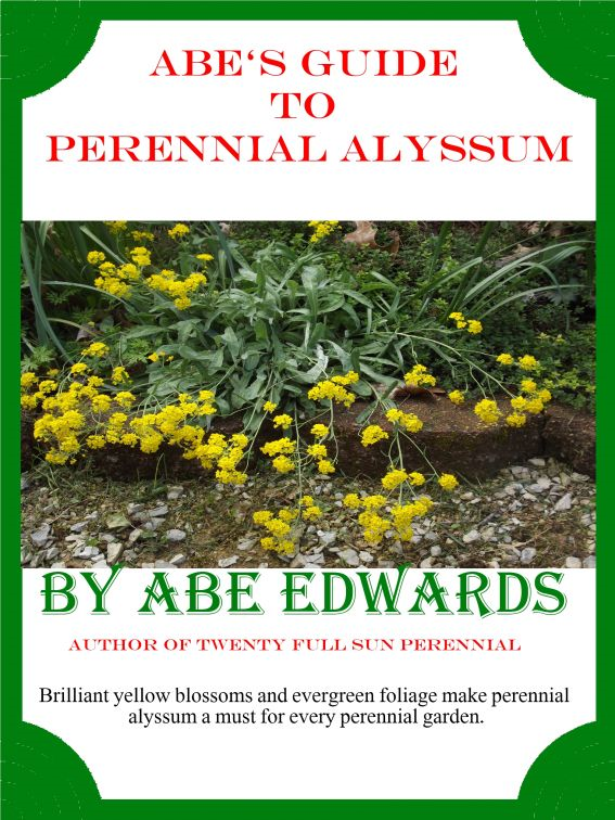 Abe's Guide to Perennial Alyssum