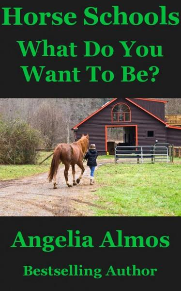 Horse Schools: What Do You Want To Be?