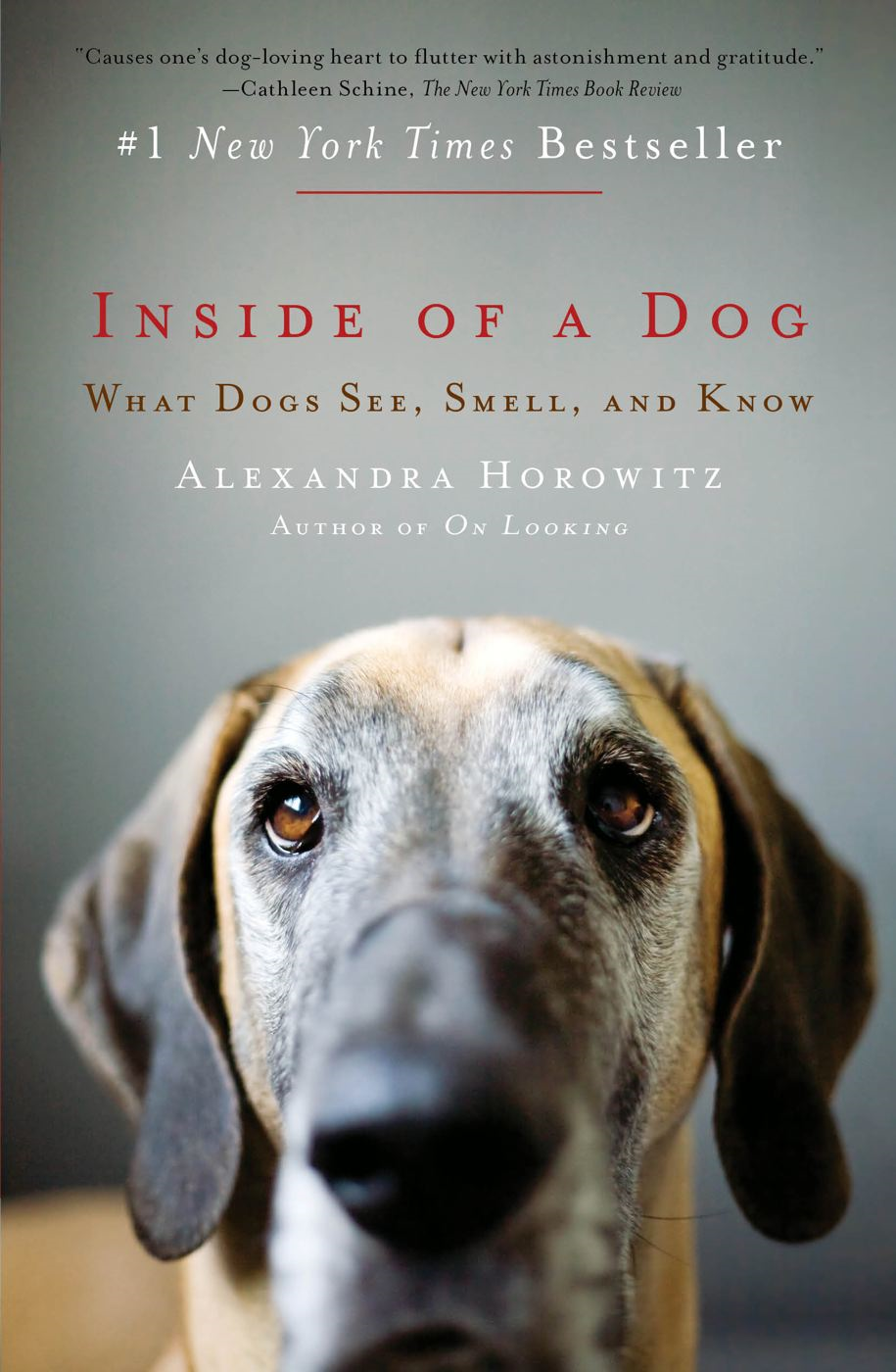 Inside of a Dog By: Alexandra Horowitz