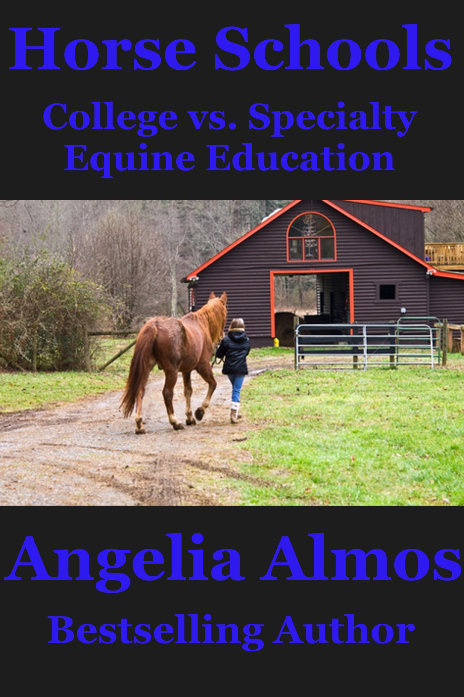 Horse Schools: College vs. Specialty Equine Education
