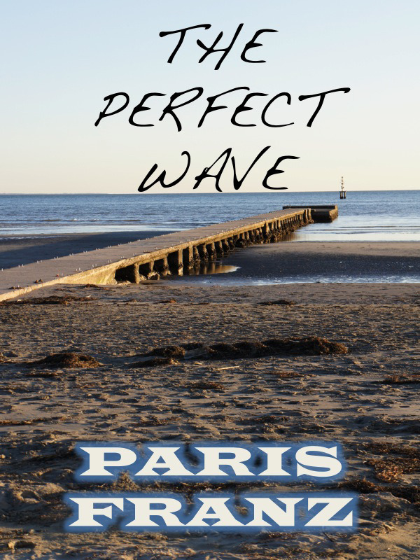 The Perfect Wave, a short story By: Paris Franz