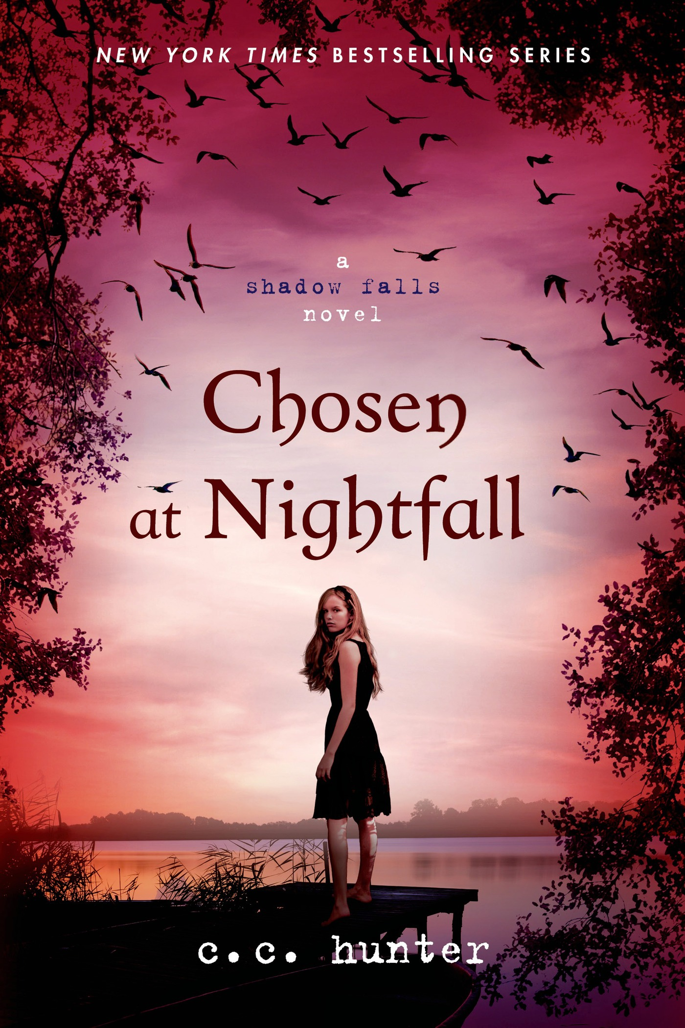 Chosen at Nightfall By: C. C. Hunter