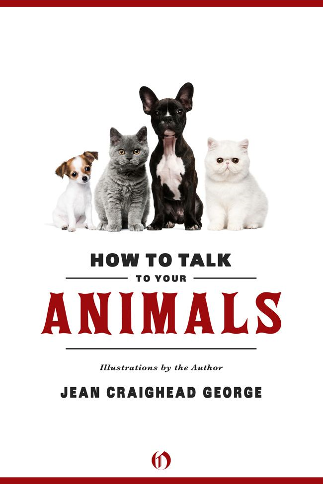 How to Talk to Your Animals By: Jean Craighead George