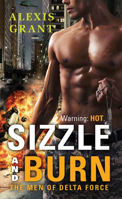 Sizzle and Burn By: Alexis Grant