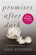 Promises After Dark (after Dark Book 3):