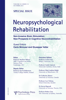 Non-Invasive Brain Stimulation: New Prospects in Cognitive Neurorehabilitation