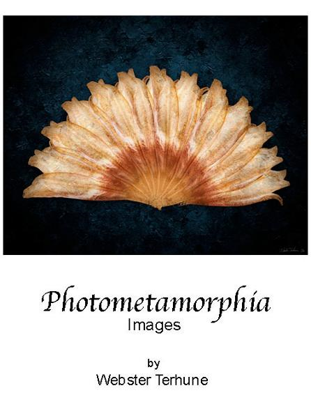 Photometamorphia