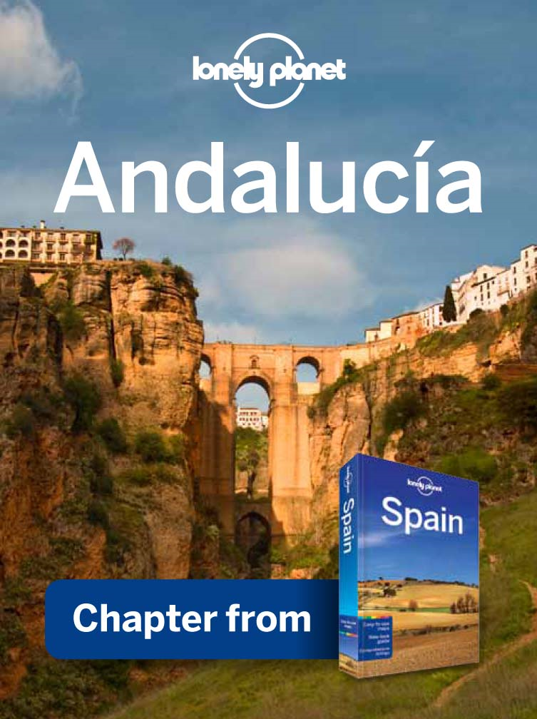 Lonely Planet Andalucia Chapter from Spain Travel Guide