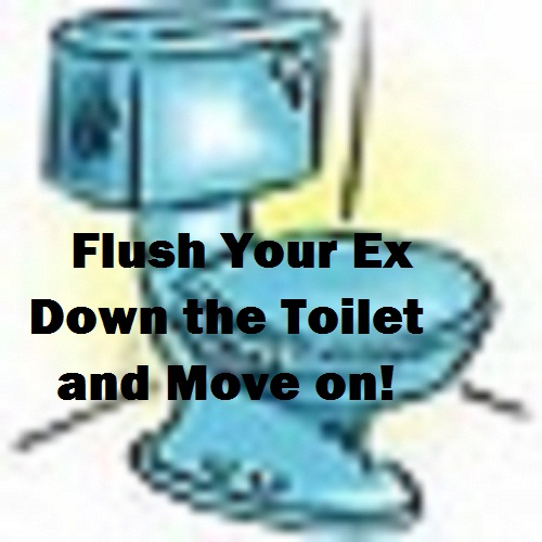 Flush your Ex Down the Toilet and Move on (self help)