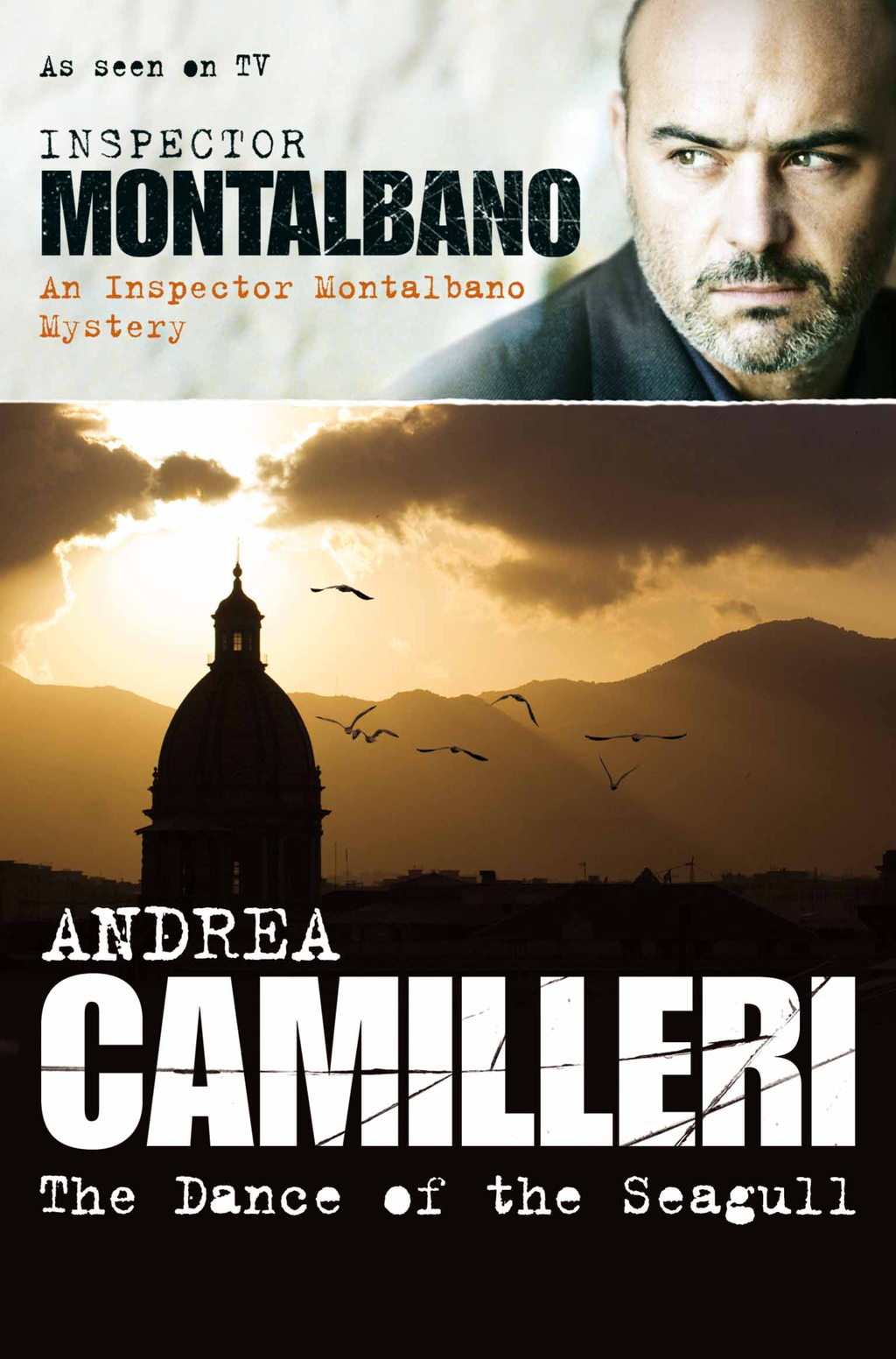 The Dance Of The Seagull The Inspector Montalbano Mysteries - Book 15
