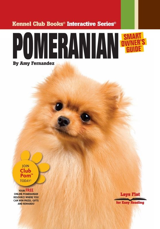 Pomeranian By: Dog Fancy Magazine