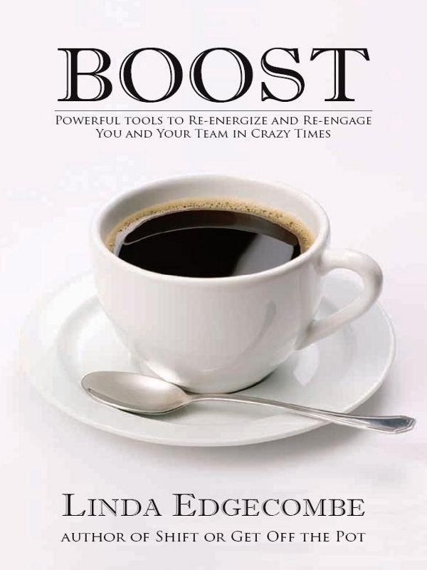 Boost: Powerful Tools to Re-energize and Re-engage You and Your Team in Crazy Times