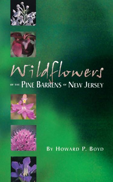 Wildflowers of the Pine Barrens of New Jersey By: Howard P. Boyd