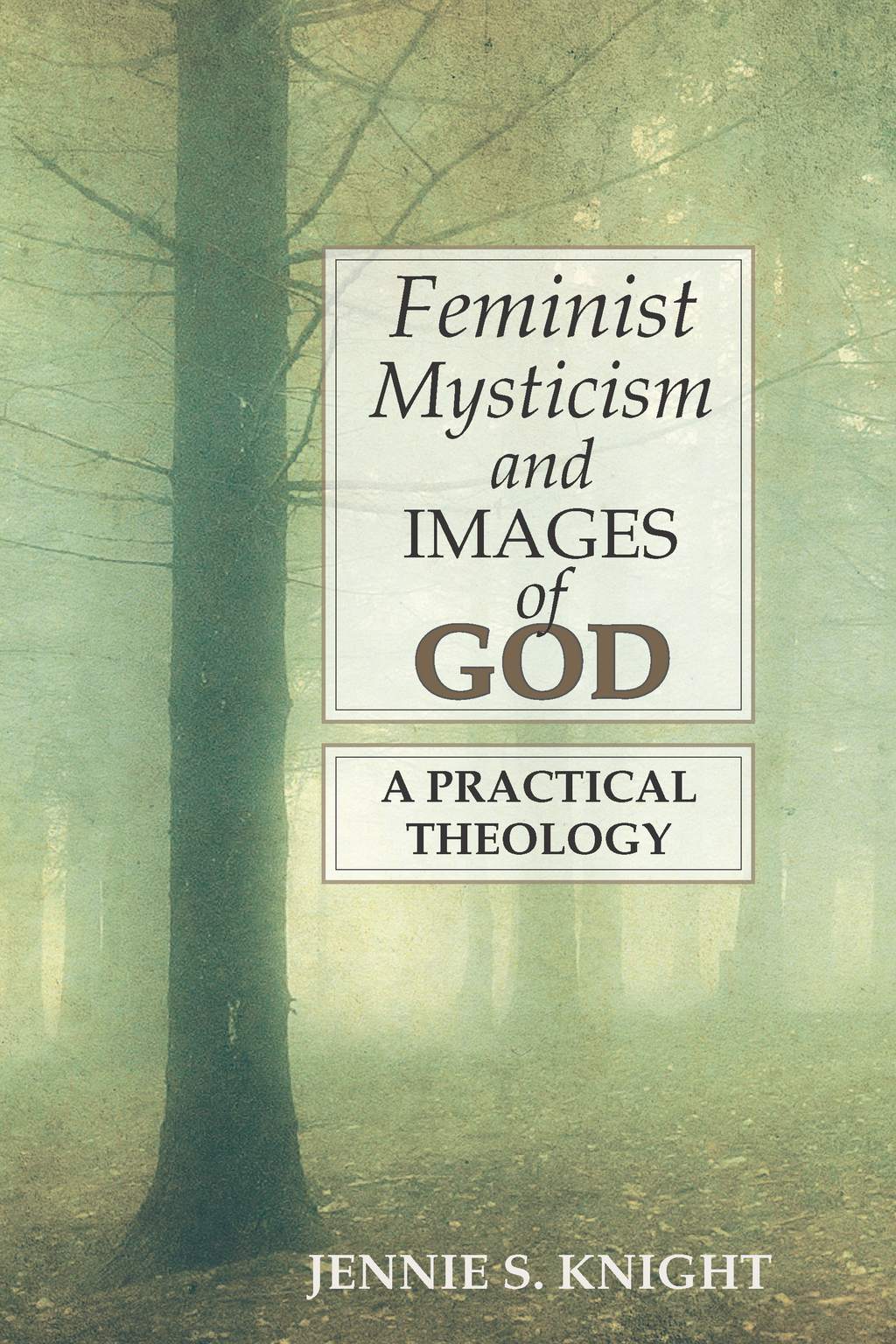 Feminist Mysticism and Images of God: A Practical Theology