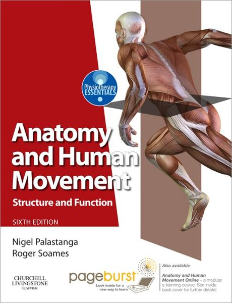 Anatomy and Human Movement By: Nigel Palastanga,Roger W. Soames