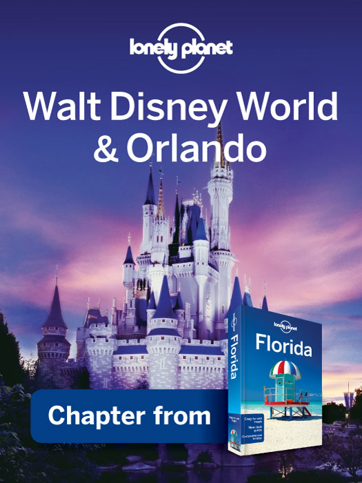 Lonely Planet Florida By: Adam Karlin,Emily Matchar,Jeff Campbell,Jennifer Rasin Denniston,Lonely Planet