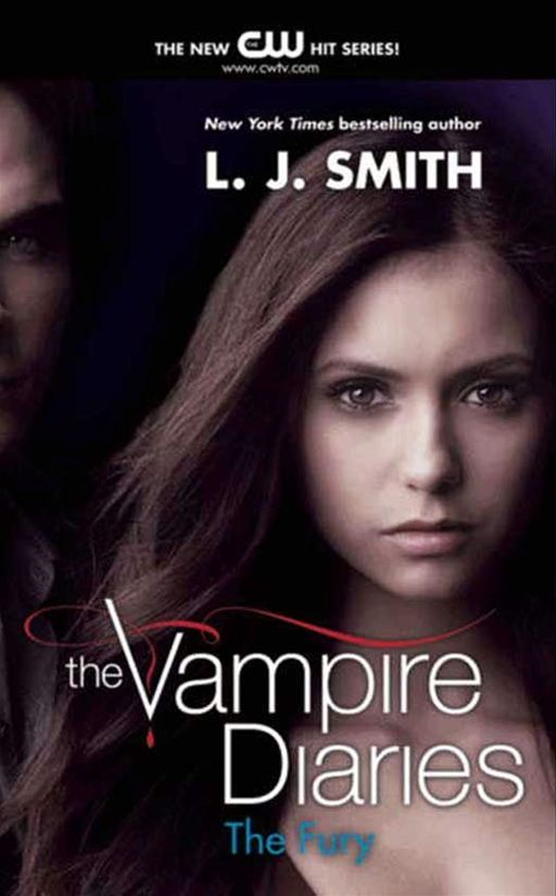 The Vampire Diaries: The Fury By: L. J. Smith