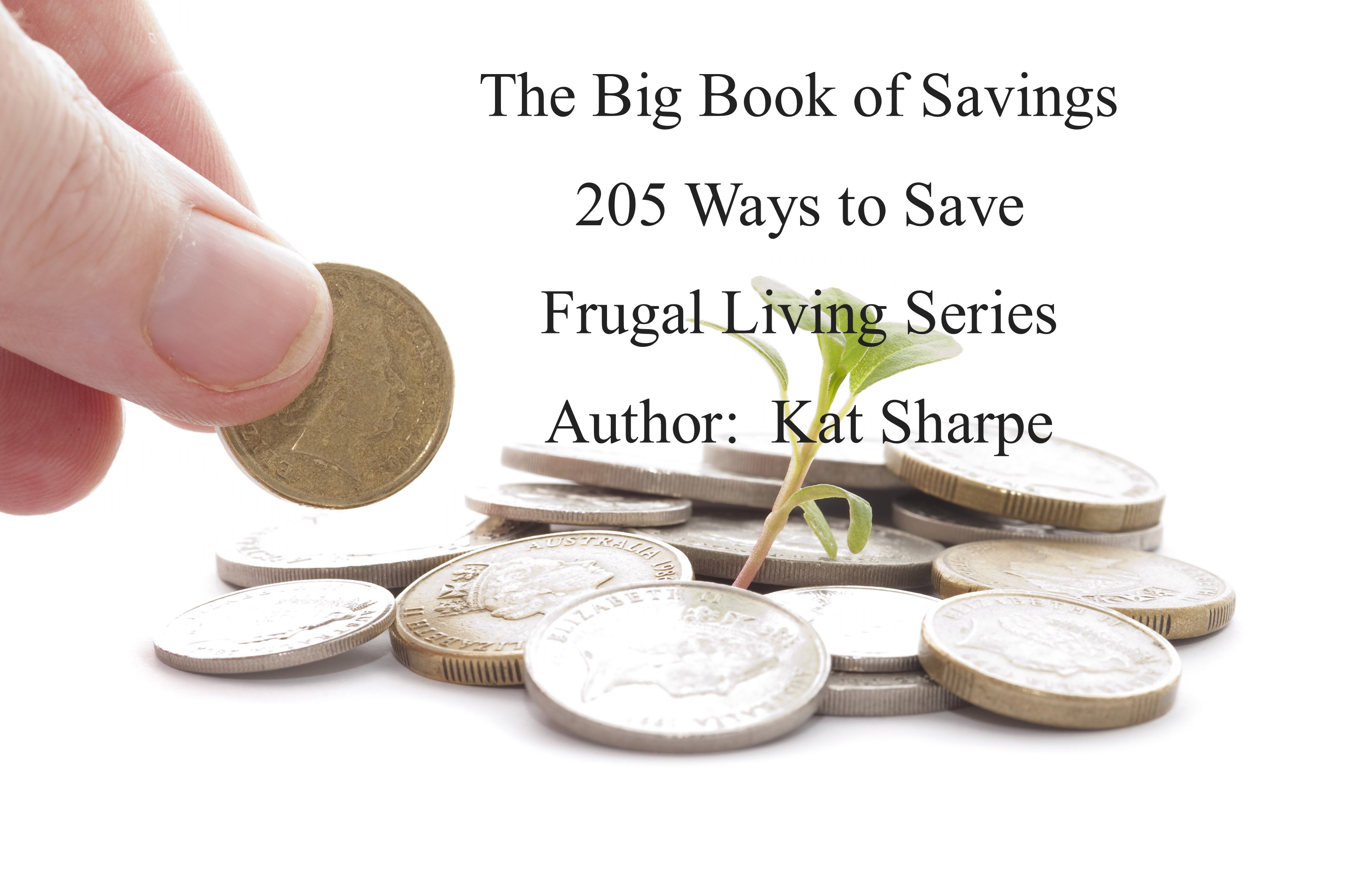 The Big Book of Savings 205 ways to save   Frugal Living Series