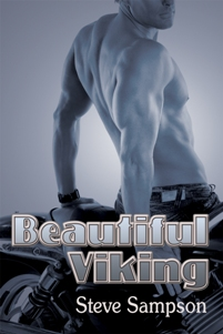 Beautiful Viking By: Steve Sampson