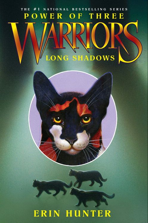 Warriors: Power of Three #5: Long Shadows By: Erin Hunter
