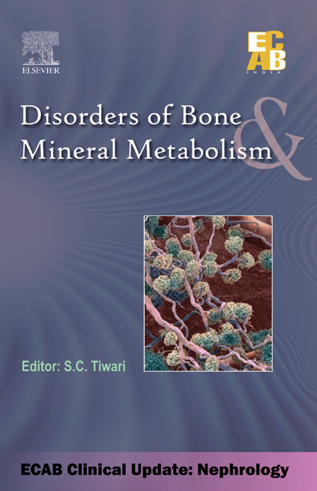 Disorders of Bone & Mineral Metabolism - ECAB