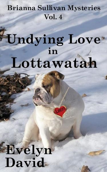 Undying Love in Lottawatah By: Evelyn David