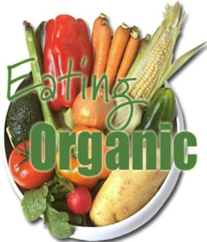 Eating Organic Foods: An Essential Guide For Newbies Switching To An Organic Lifestyle