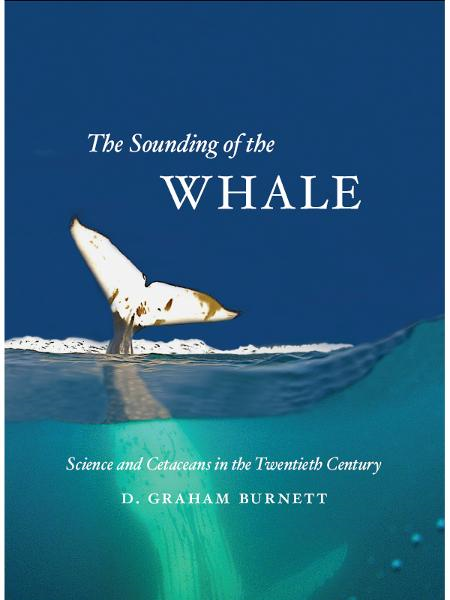 The Sounding of the Whale By: D. Graham Burnett