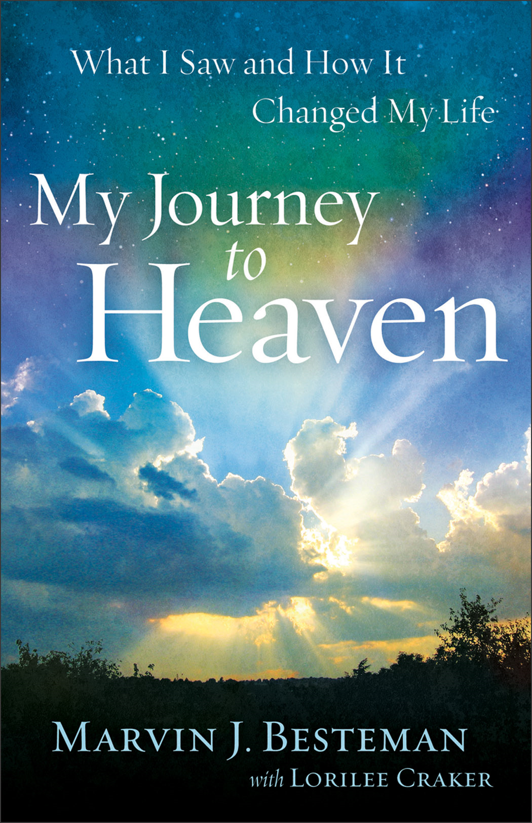 My Journey to Heaven By: Lorilee Craker,Marvin J. Besteman