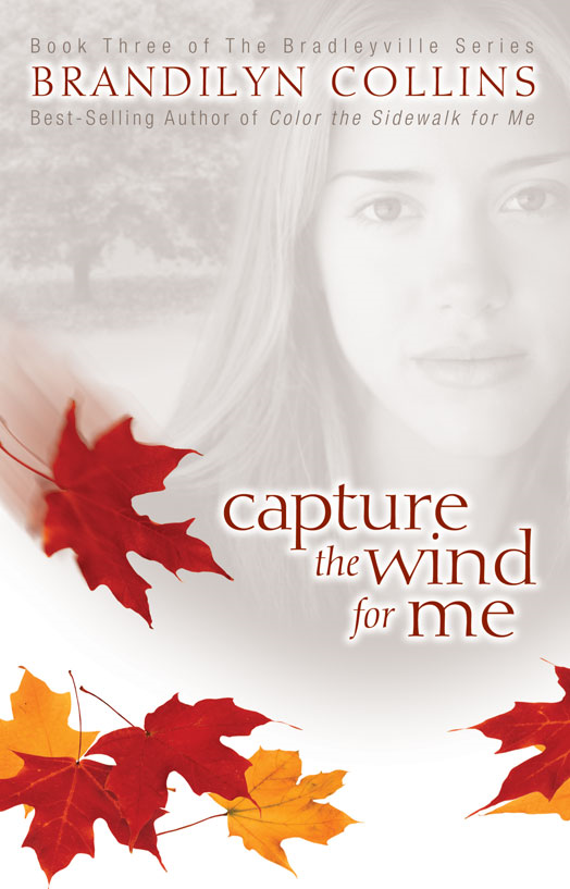 Capture the Wind for Me By: Brandilyn   Collins