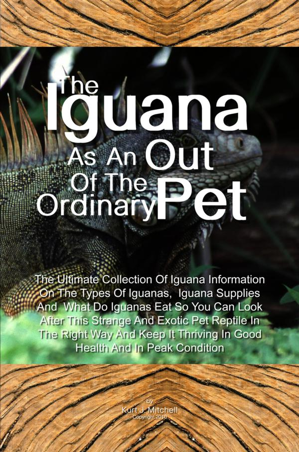 The Iguana As An Out Of The Ordinary Pet