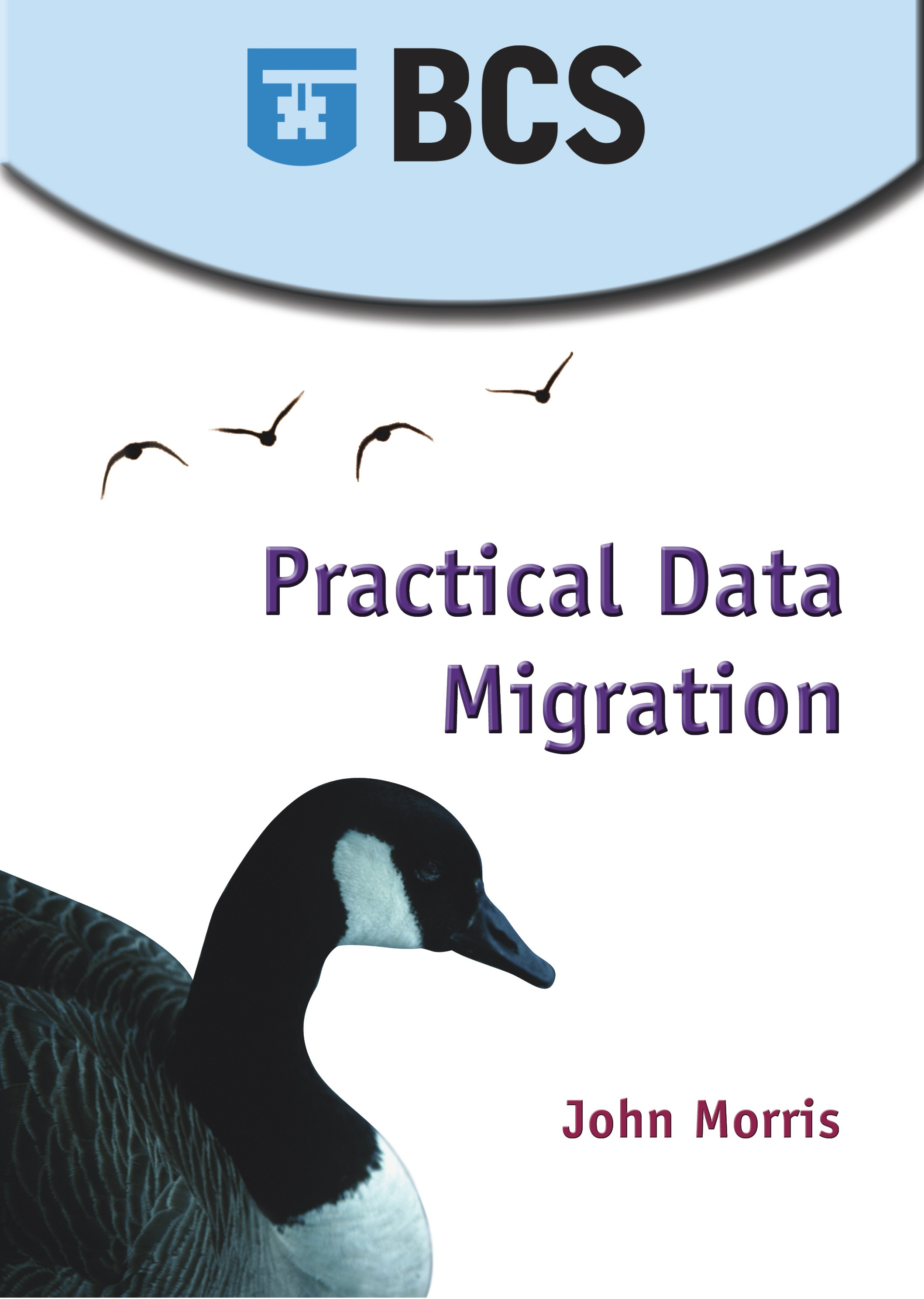 Practical Data Migration By: John Morris