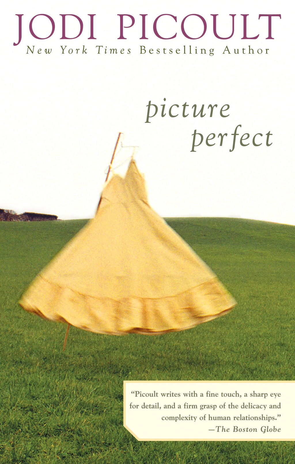 Picture Perfect By: Jodi Picoult