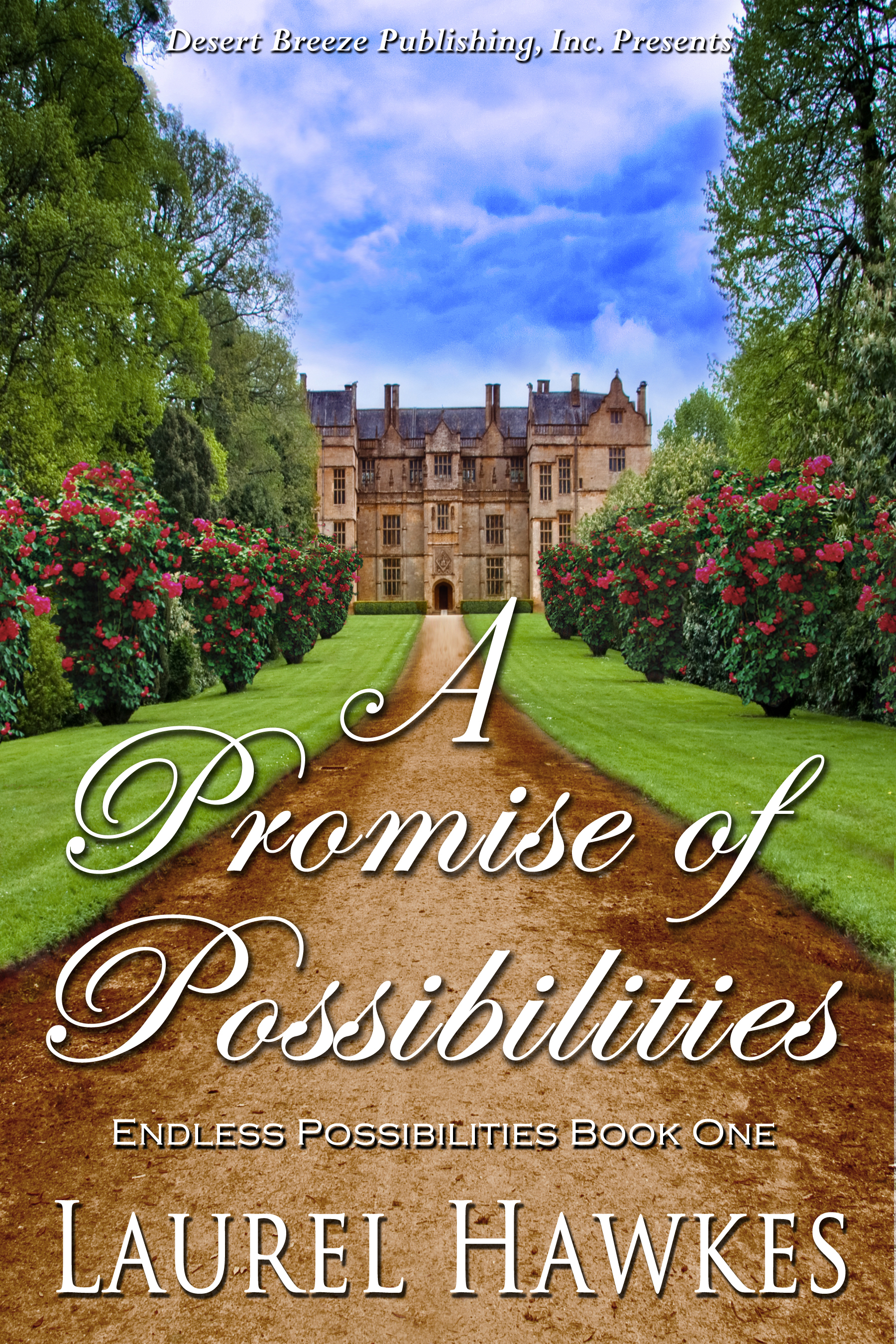 Endless Possibilities Book One: A Promise of Possibilities By: Laurel Hawkes