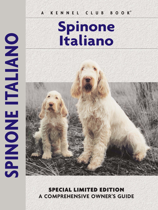 Spinoni Italiano