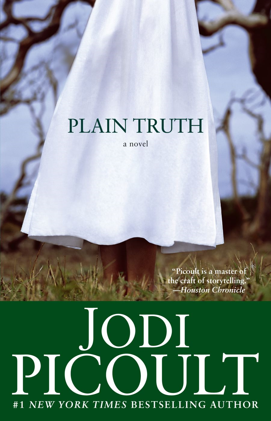 Plain Truth By: Jodi Picoult