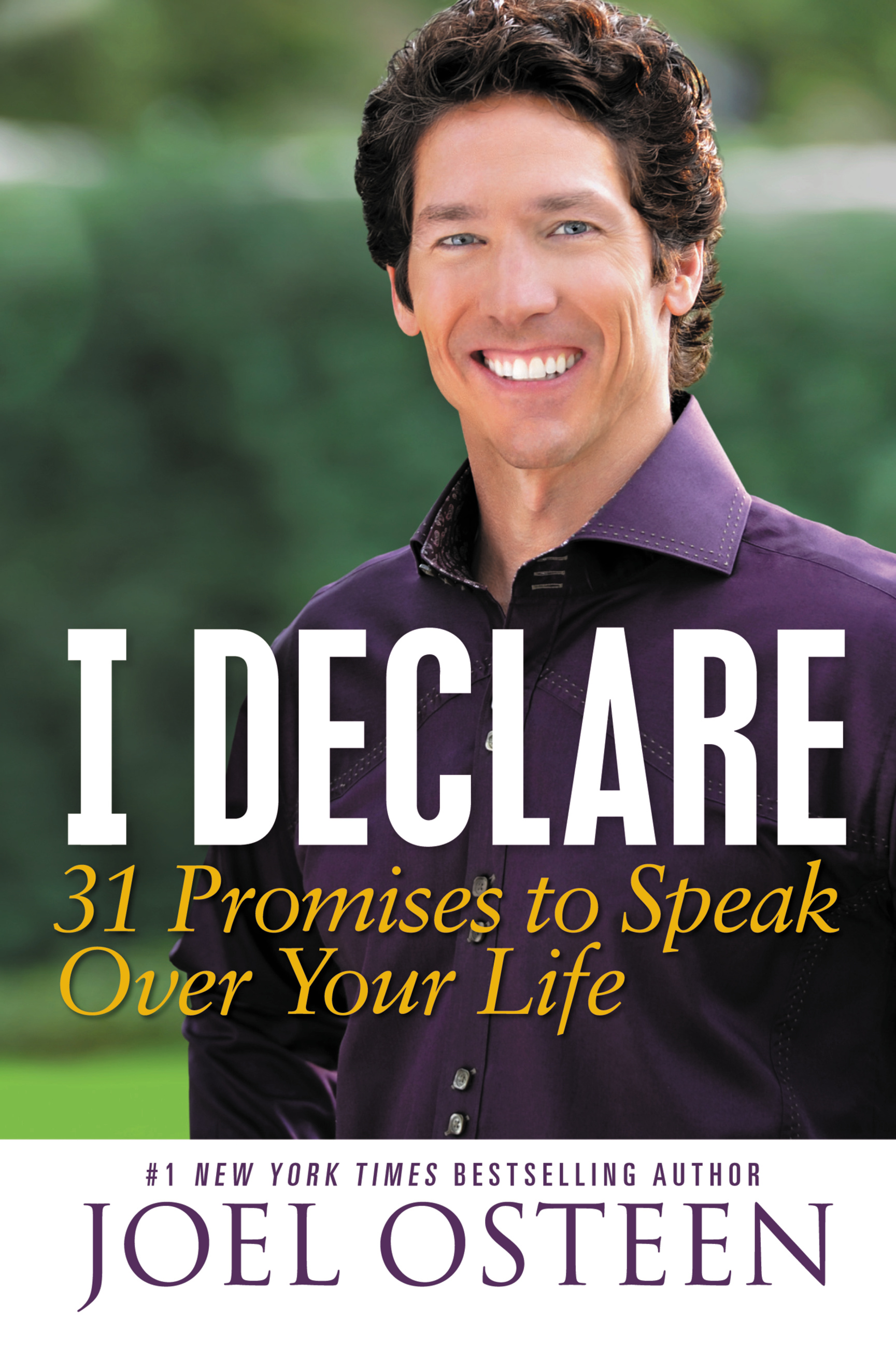 I Declare: 31 Promises to Speak Over Your Life By: Joel Osteen