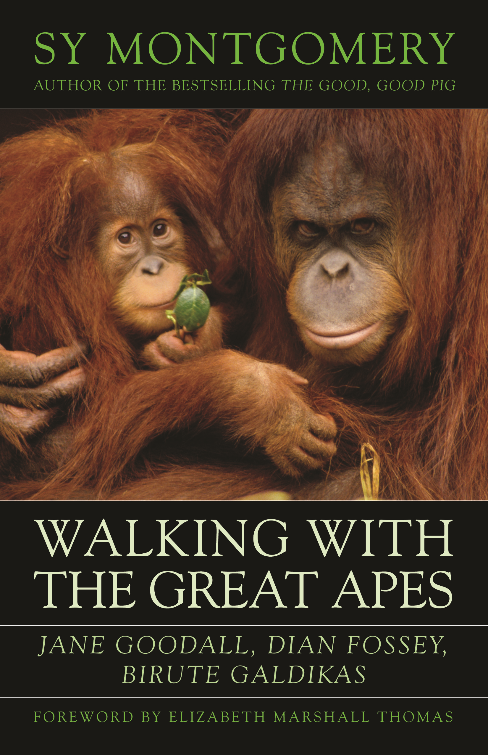 Walking with the Great Apes Jane Goodall, Dian Fossey, Biruté Galdikas