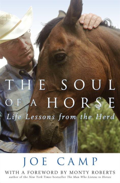 The Soul of a Horse By: Joe Camp