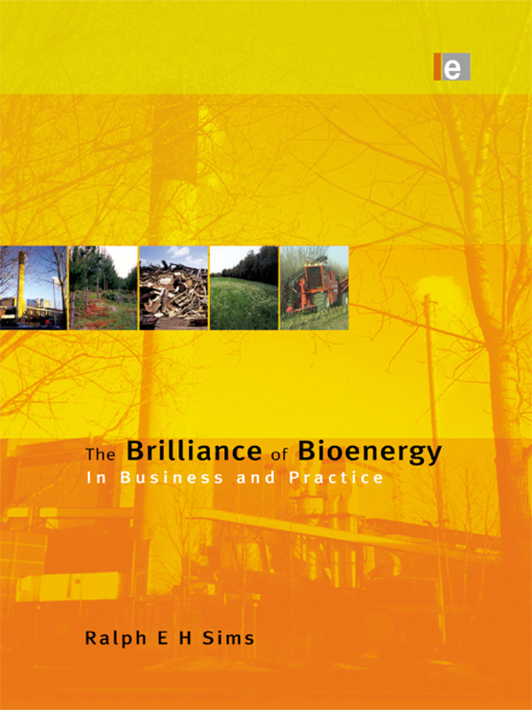The Brilliance of Bioenergy In Business and In Practice