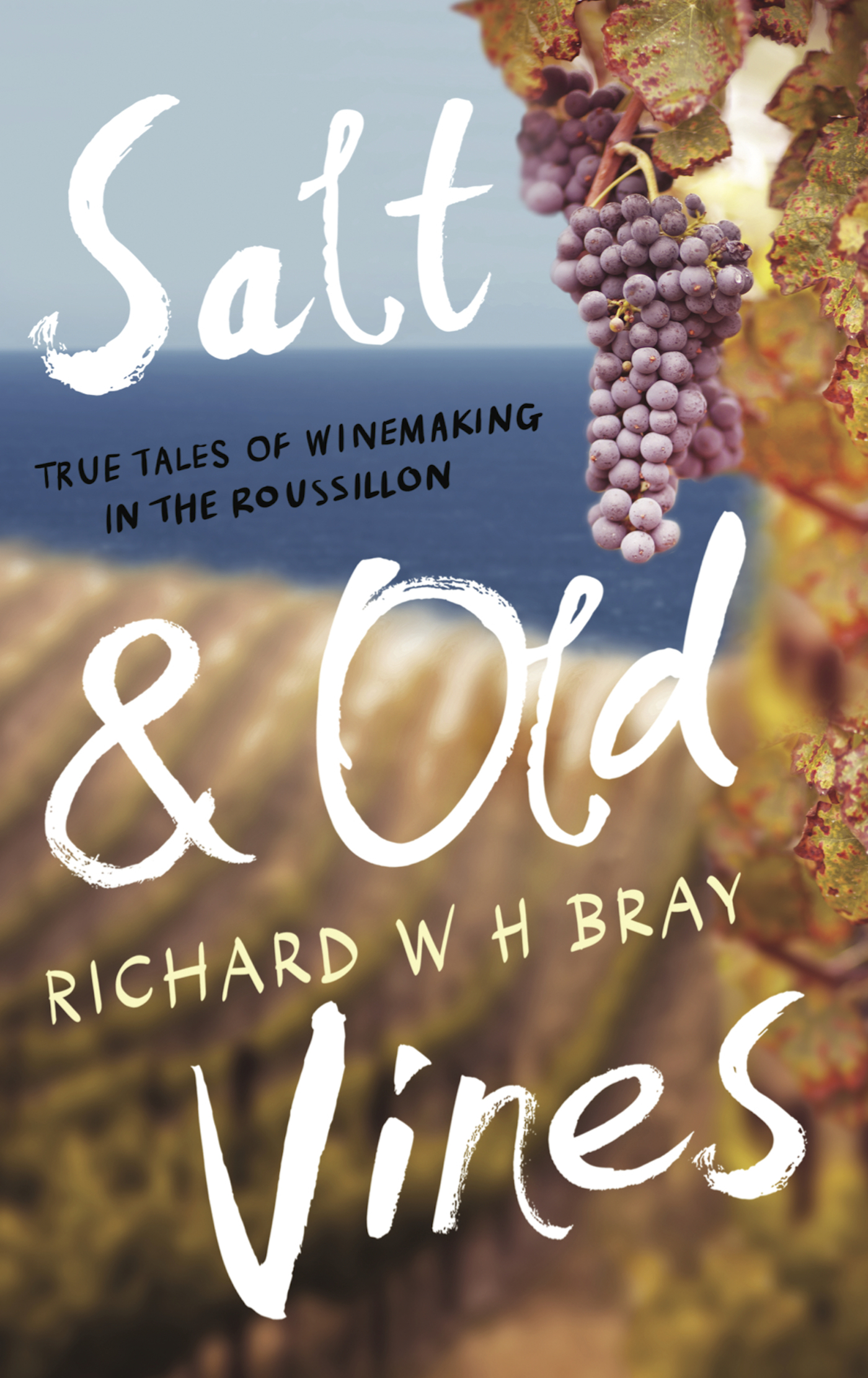 Salt & Old Vines: True Tales of Winemaking in the Roussillon
