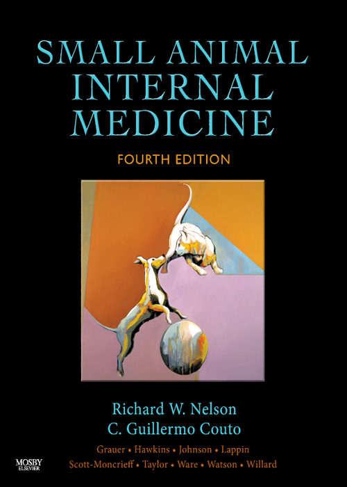 Small Animal Internal Medicine By: C. Guillermo Couto,Richard W. Nelson