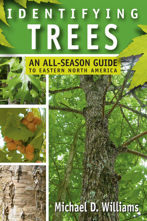 Identifying Trees By: Michael D. Williams