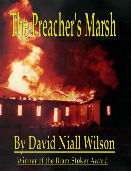 The Preacher's Marsh By: David Niall Wilson