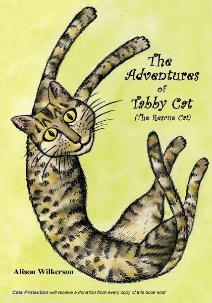 The Adventures of Tabby Cat (The Rescue Cat)