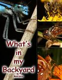 download What's in My Backyard? book
