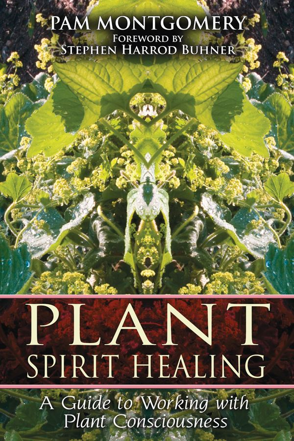 Plant Spirit Healing: A Guide to Working with Plant Consciousness By: Pam Montgomery,Stephen Harrod Buhner