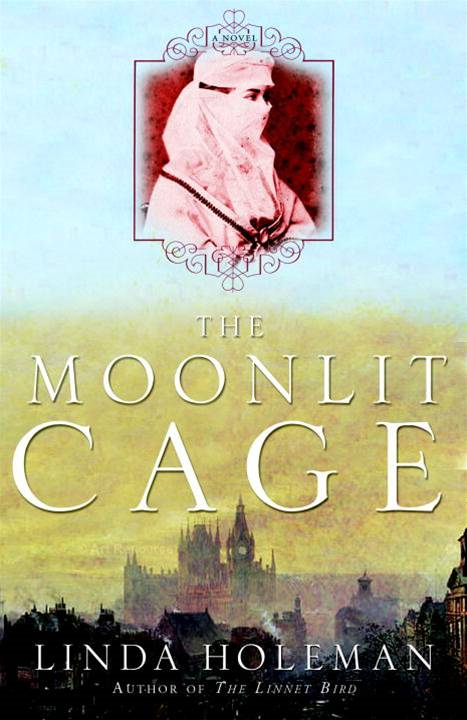 The Moonlit Cage